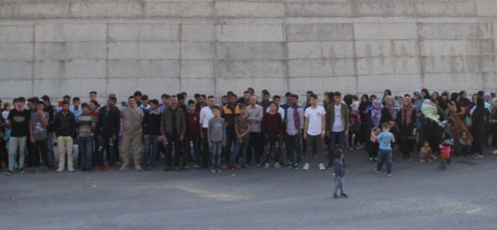 Başkale \'de 133 Kaçak göçmen yakalandı.