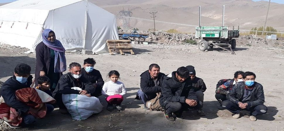 Başkale'de 12 düzensiz göçmen yakalandı