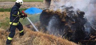 Başkale'de 3 bin 200 bağ ot yandı.