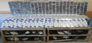 Başkale'de 7 bin 632 paket kaçak sigara ve 90 güvercin yakalandı