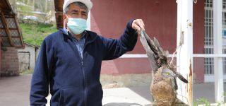 Yaralı Şahine Belediye Personeli Sahip çıktı
